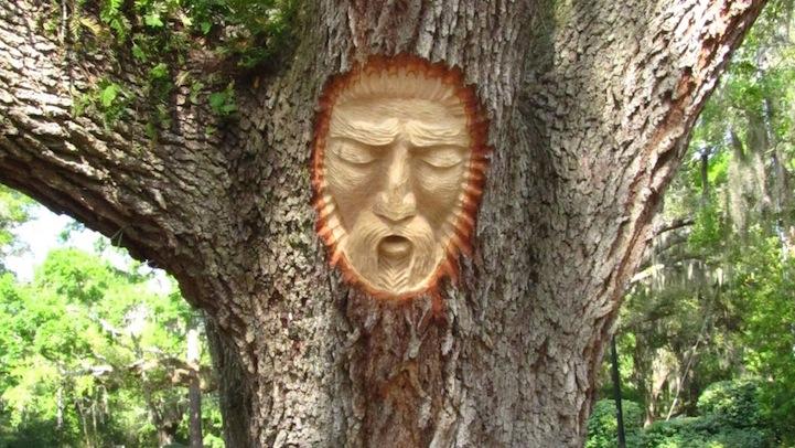 treespirits5