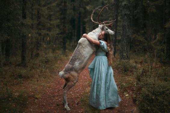 deer hugging