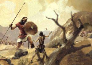 Stocks — Part XXX: jlcollinsnh vs. Vanguard