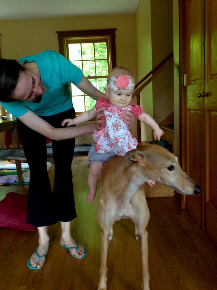 Frugalwoods Baby_Hound_pony